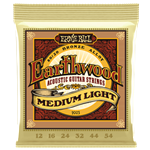 Earthwood Acoustic Guitar Medium Light