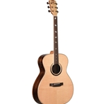Teton 10th Anniversary Special Edition Guitar