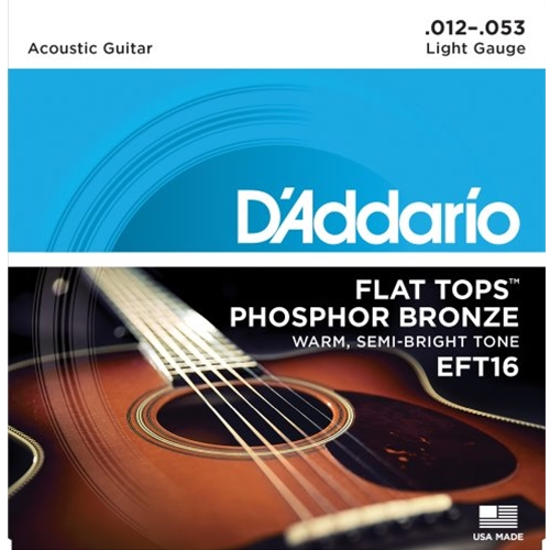 D'Addario Phosphor Bronze Flat Top Acoustic Guitar Strings Light